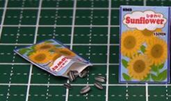 迷你瓜子制作――迷你食物制作教程视频