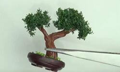 自己动手,给可儿娃娃做一个迷你盆栽!