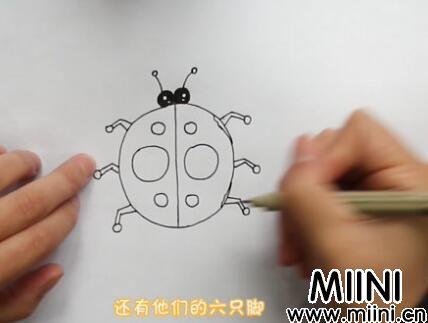 七星瓢虫简笔画怎么画?七星瓢虫简笔画步骤教程
