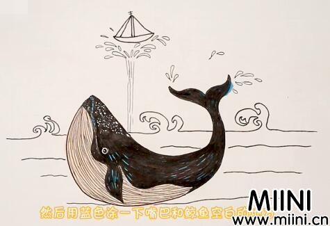 鲸鱼简笔画怎么画?鲸鱼简笔画步骤教程