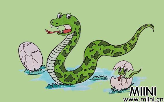十二生肖蛇简笔画步骤教程