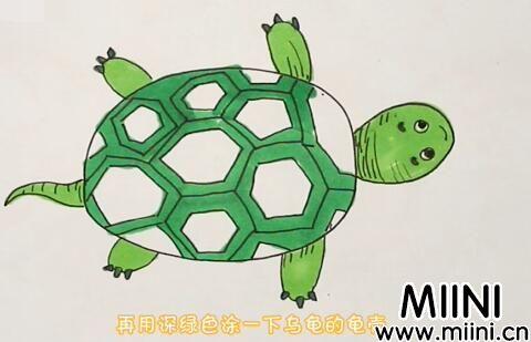 乌龟简笔画步骤教程