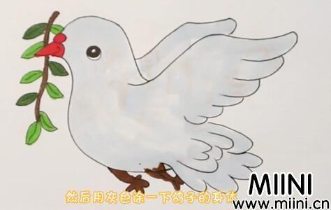 和平鸽怎么画?和平鸽画法步骤教程