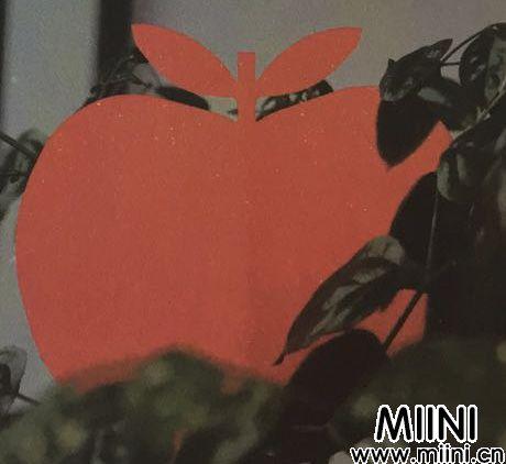 苹果5.jpg