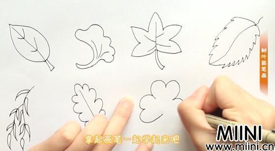 叶子简笔画怎么画?叶子简笔画步骤教程