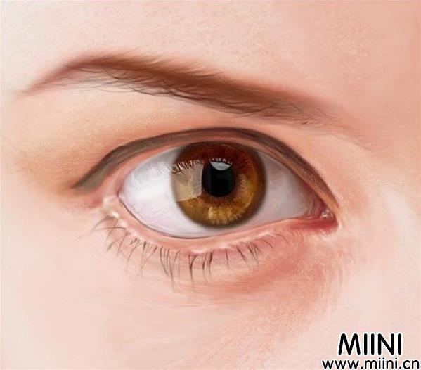 PS插画写实眼睛画法详细步骤图解