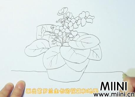 简单紫罗兰画法怎么画?简单紫罗兰画法步骤教程