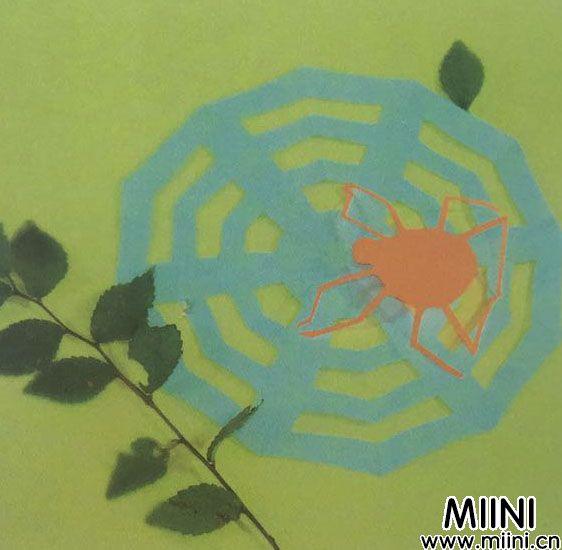 蜘蛛网5.jpg