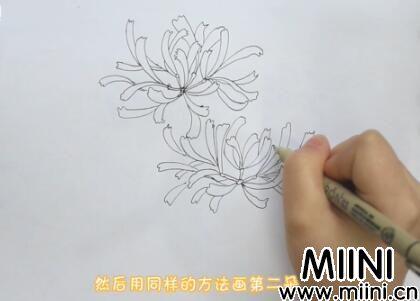 彼岸花画法怎么画?彼岸花画法步骤教程