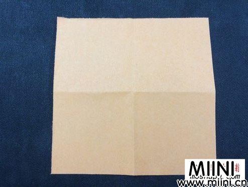 热带鱼折纸01.JPG