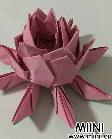 立体折纸荷花8