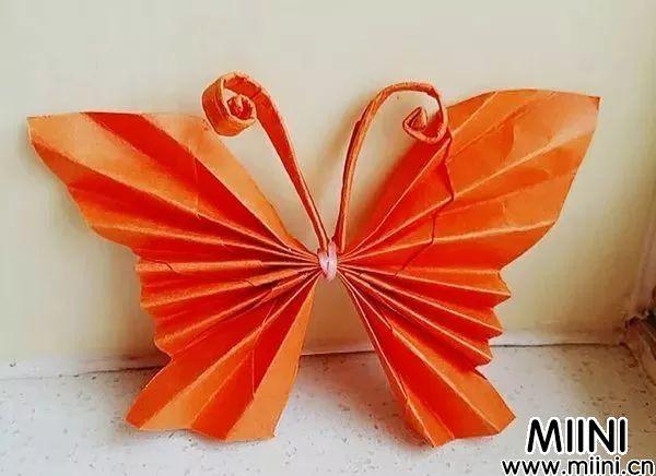 折纸蝴蝶17.jpeg