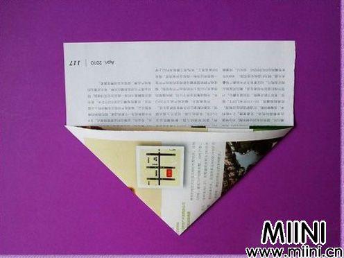 燕子飞机02.JPG