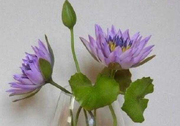 超轻粘土,软陶水莲花朵制作方法教学