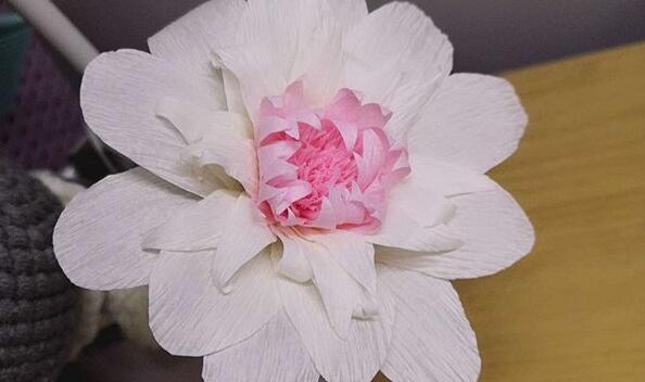 用皱纹纸做小菊花步骤图