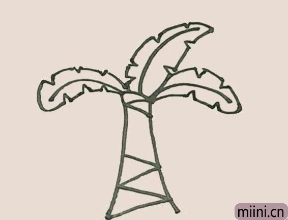简笔画之芭蕉树