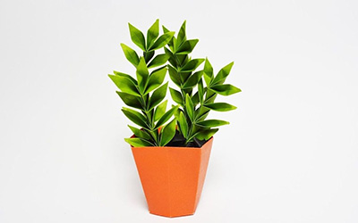 教你折纸金钱树盆栽,放在桌上寓意财源滚滚