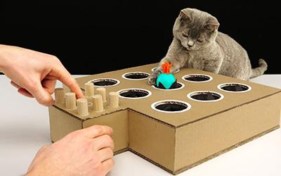 卡纸做的打地鼠小游戏,逗小猫玩