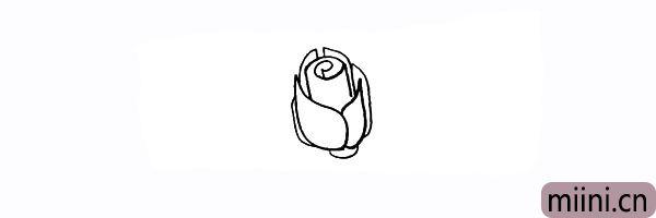 6.在花朵的下方画出一个半椭圆的的花蒂。