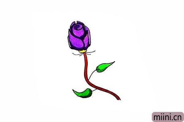 10.最后把玫瑰花涂上自己喜欢的颜色吧。