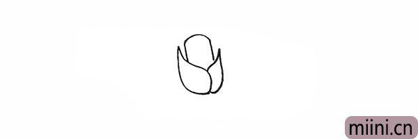 3.在两片花瓣中间出画出一个圆柱形的花瓣。