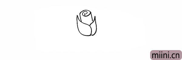 4.连接圆柱花瓣画出花芯.一个卷卷的形状。