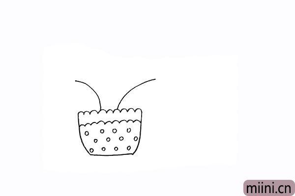 4.先画出两支向外生长的含羞草的茎。
