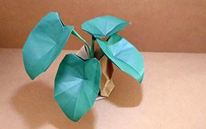 在客厅放一盆折纸绿萝,比真的还漂亮