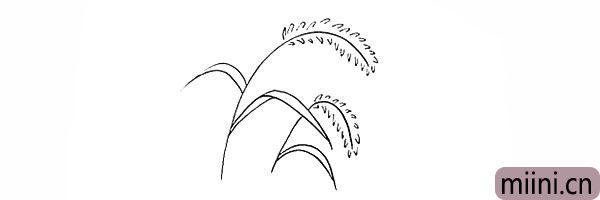 6.用同样的画法画出一棵较小的狗尾草。