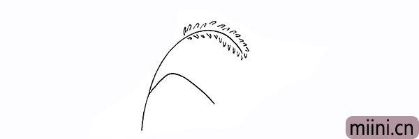 3.向下画出狗尾草叶子的边缘部分。