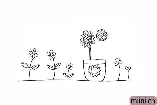 14.用两条竖线画出向日葵微粗的茎。