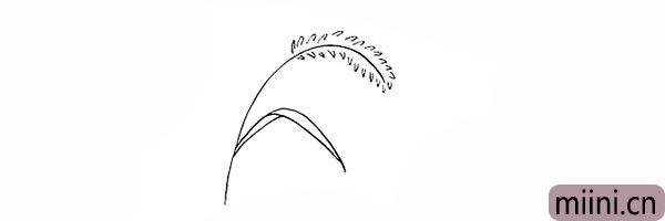 4.再用线条画出一片完整的叶子。
