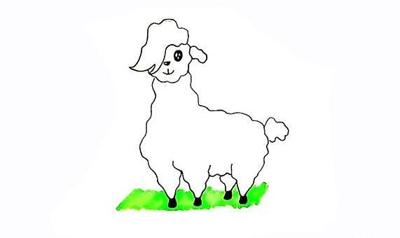 怎么样画出可爱的小羊驼
