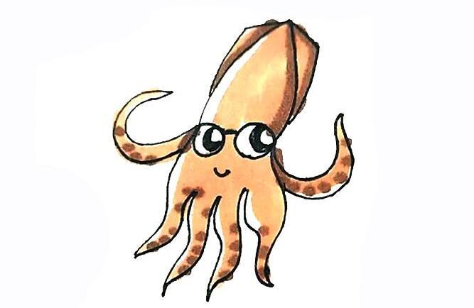 野生动物鱿鱼简笔画