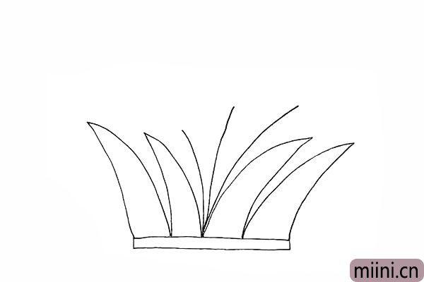 4.我们再画出长短不一的芦苇的茎。