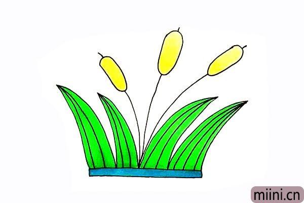 8.最后就可以给芦苇涂上漂亮的颜色了。