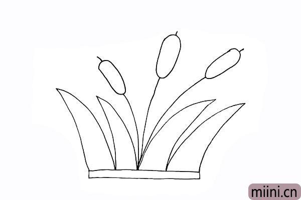 6.同样的还有另外两朵漂亮的芦苇花。