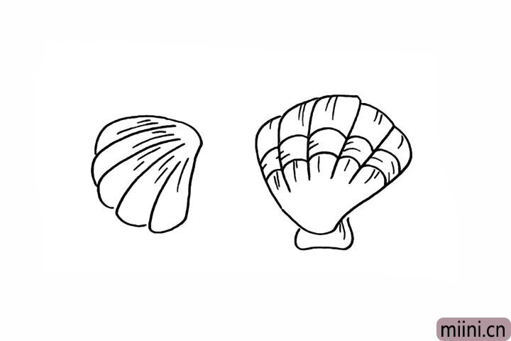 9.给贝壳加上一些条纹更加层次。