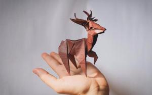 这只折纸小鹿太好看了,出去显摆一下