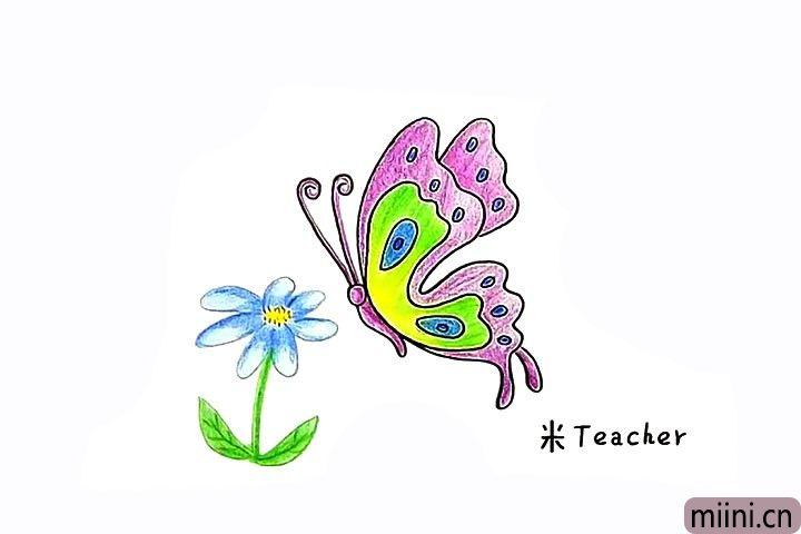 8.最后给蝴蝶涂上漂亮的颜色吧。