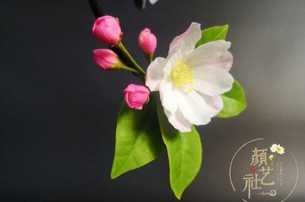 用粘土制作特别漂亮的山茶花步骤图解