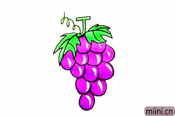 6.最后我们把好看又好吃的葡萄涂上漂亮的颜色。