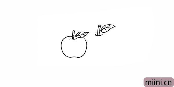 5.再勾落出一片叶子.注意叶子的轮廓线。