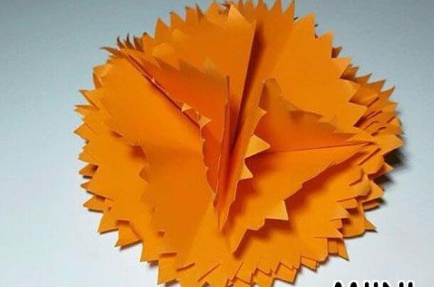 立体康乃馨剪纸步骤图解