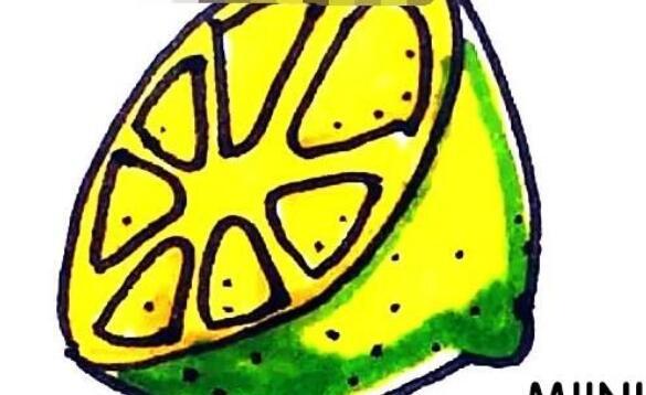 柠檬简笔画的步骤教程
