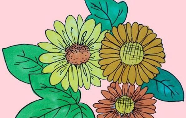 向日葵,太阳花简笔画步骤教程