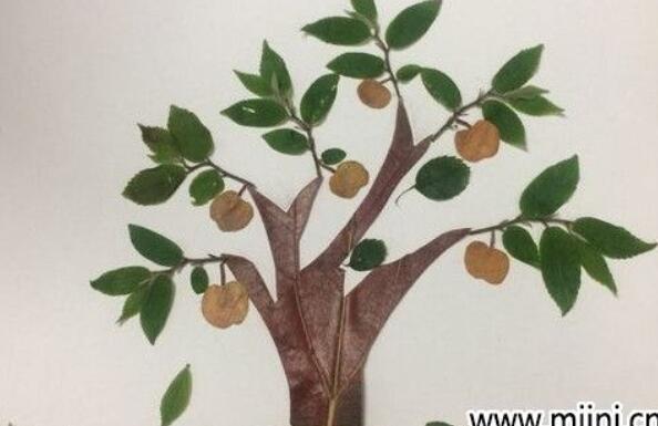 用树叶做一颗果树的贴画教程