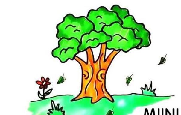 大树简笔画步骤图解