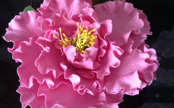 鲜艳的粘土牡丹花制作步骤