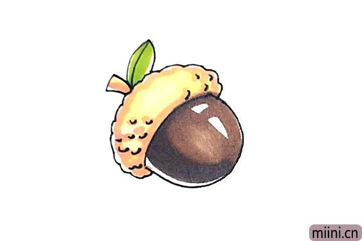 松鼠爱吃的橡果简笔画教程